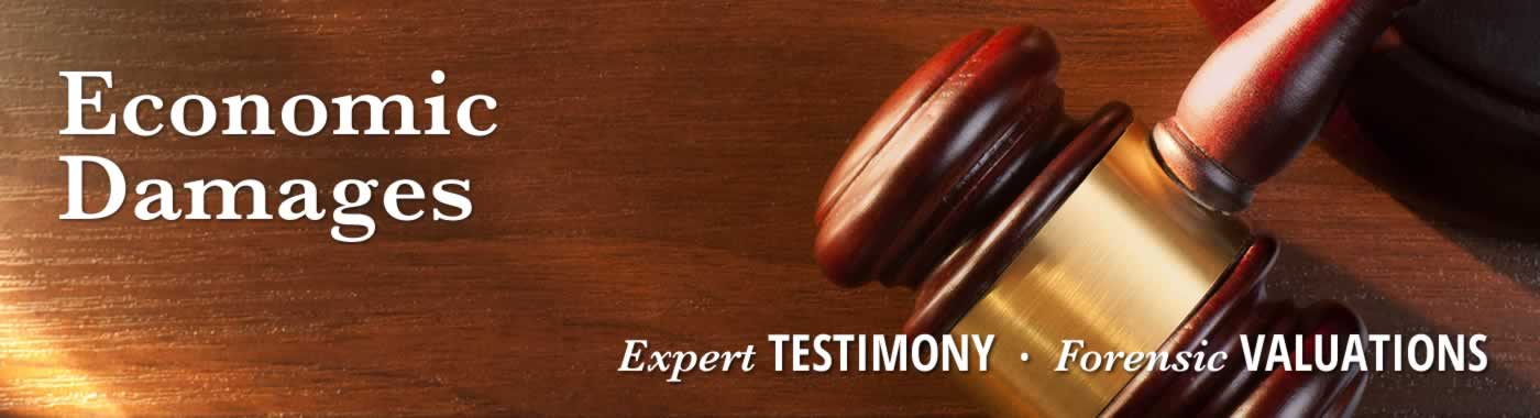 Economic Damages, Expert Testimony, Forensic Valuations
